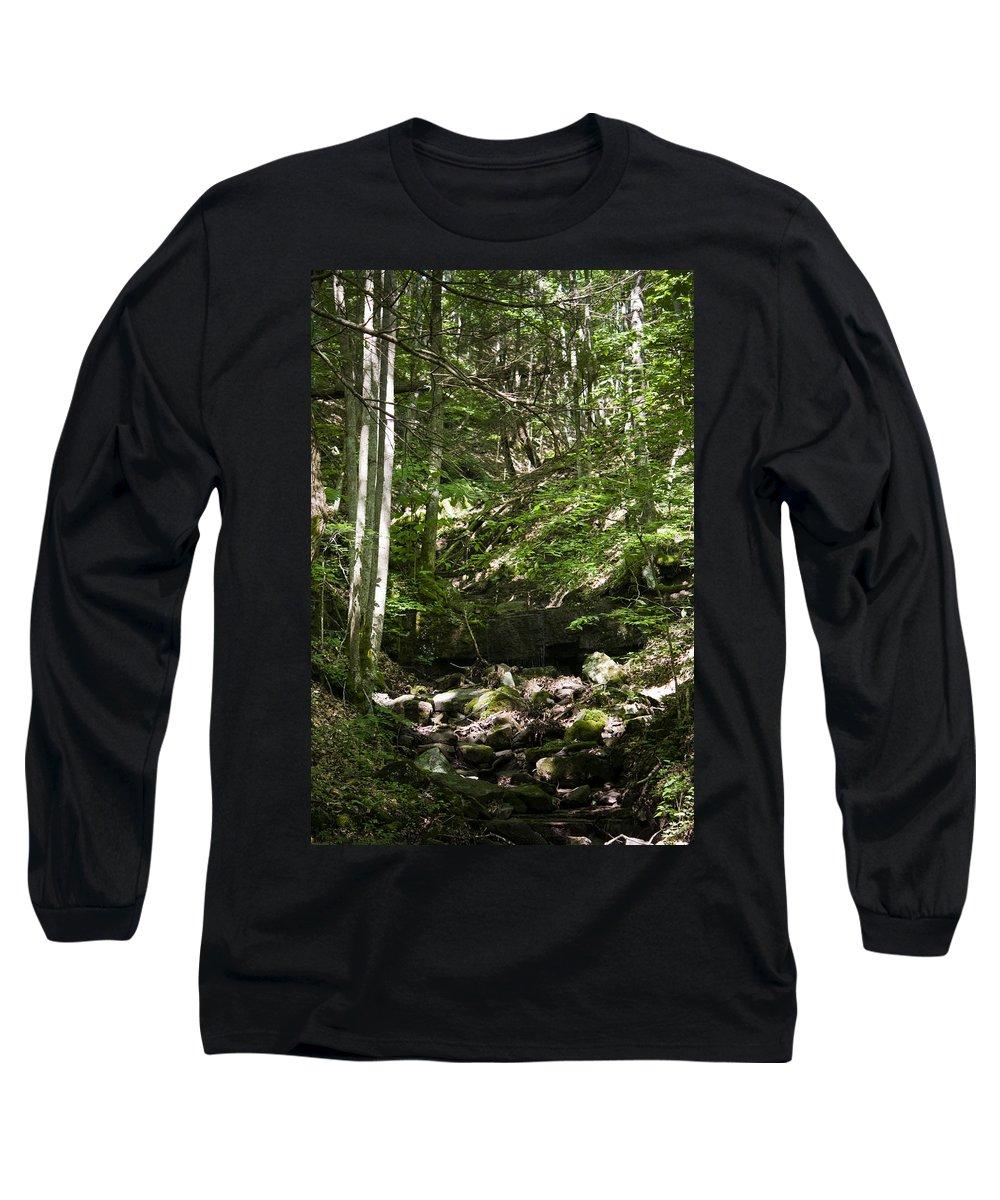 Bluestone Long Sleeve T-Shirt featuring the photograph Bluestone State Park Mountain Stream West Virginia by Teresa Mucha
