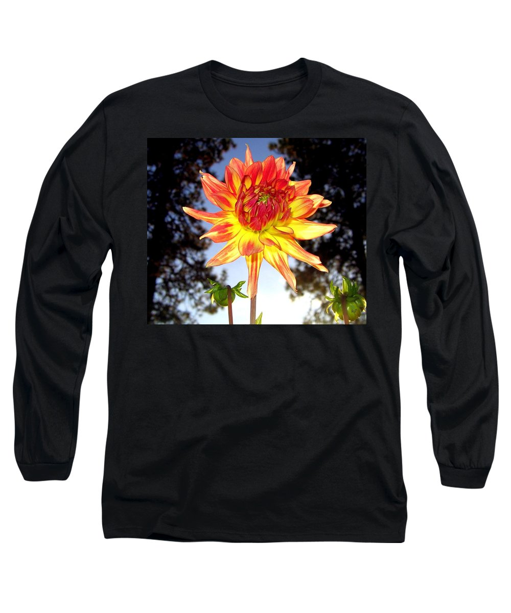 Dahlia Long Sleeve T-Shirt featuring the photograph Bold And Beautiful by Will Borden