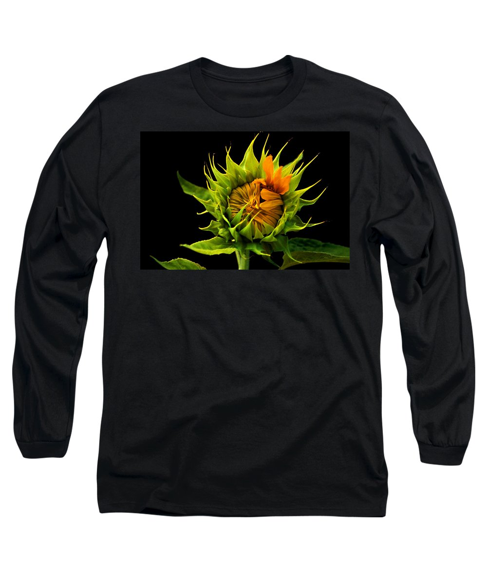 Gerber Daisy Long Sleeve T-Shirt featuring the photograph Budding Beauty by Laurie Paci