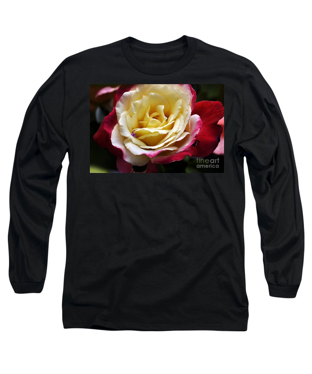 Clay Long Sleeve T-Shirt featuring the photograph Burst Of Rose by Clayton Bruster
