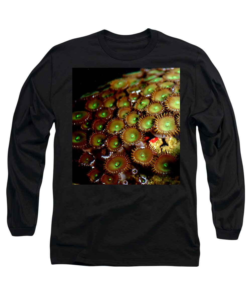 Underwater Long Sleeve T-Shirt featuring the photograph Button Polyps by Anthony Jones