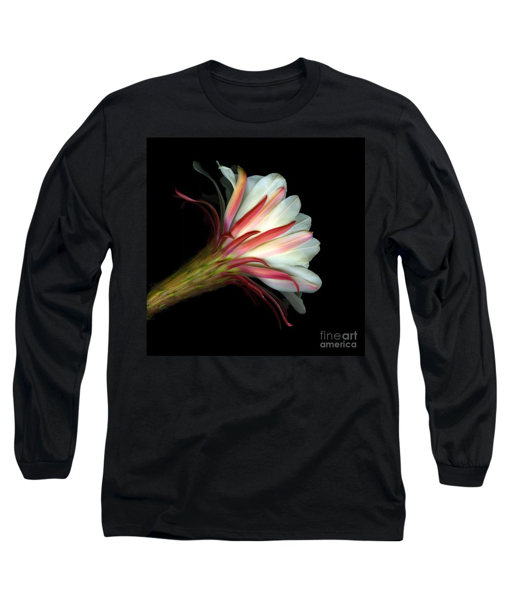 Scanart Long Sleeve T-Shirt featuring the photograph Cactus Flower by Christian Slanec