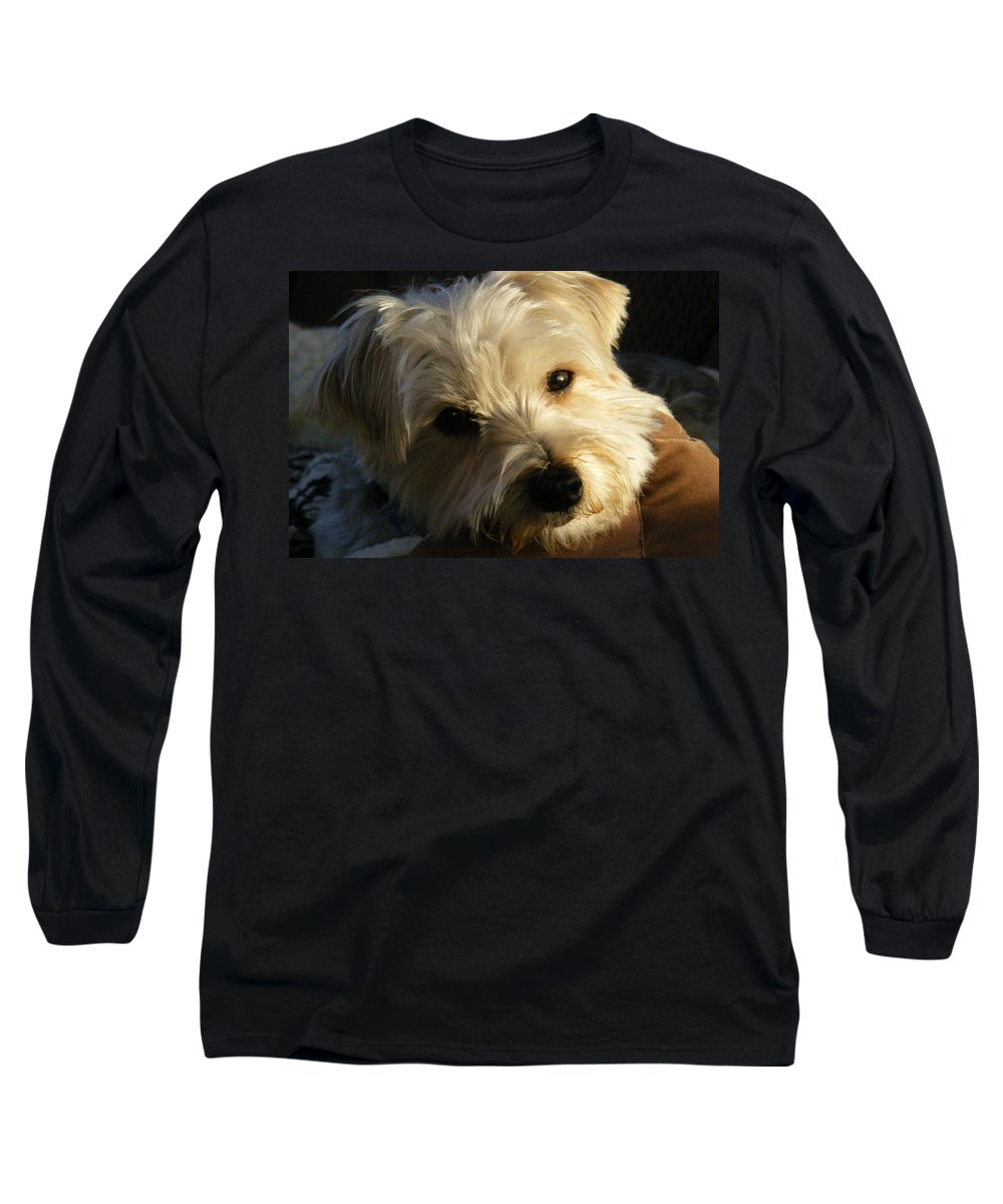 Dog Long Sleeve T-Shirt featuring the photograph Charlie by Ed Smith