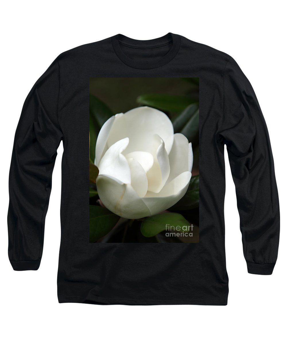 Magnolia Long Sleeve T-Shirt featuring the photograph Container by Amanda Barcon