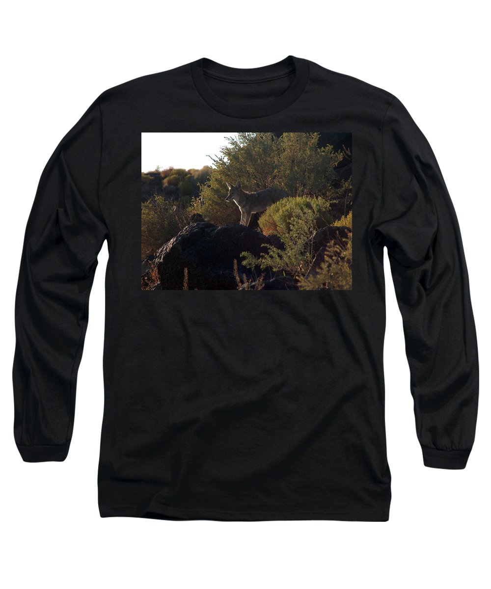 Coyote Long Sleeve T-Shirt featuring the photograph Coyote At The Petrogyphs 2 by Tim McCarthy