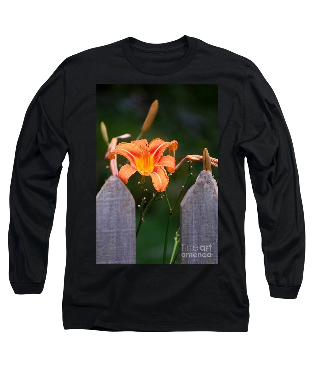 Digital Photograph Long Sleeve T-Shirt featuring the photograph Day Lilly Fenced In by David Lane