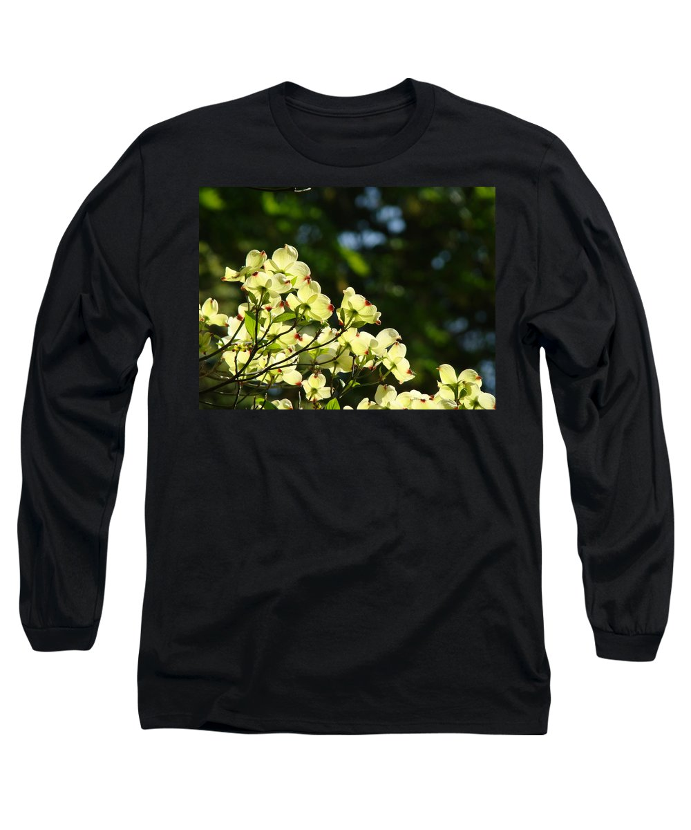 Dogwood Long Sleeve T-Shirt featuring the photograph Dogwood Flowers White Dogwood Tree Flowers Art Prints Cards Baslee Troutman by Baslee Troutman