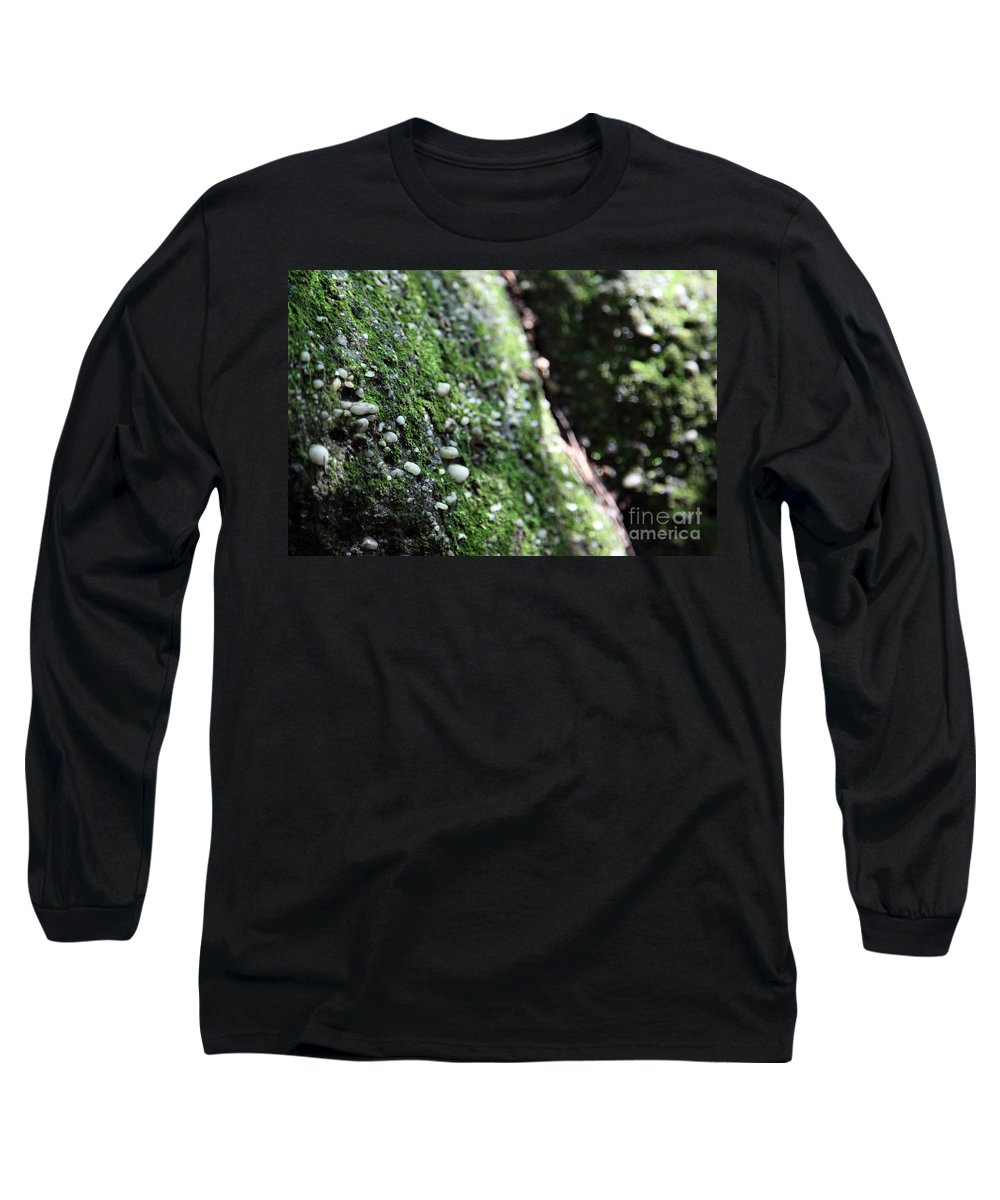 Rocks Long Sleeve T-Shirt featuring the photograph Embedded by Amanda Barcon