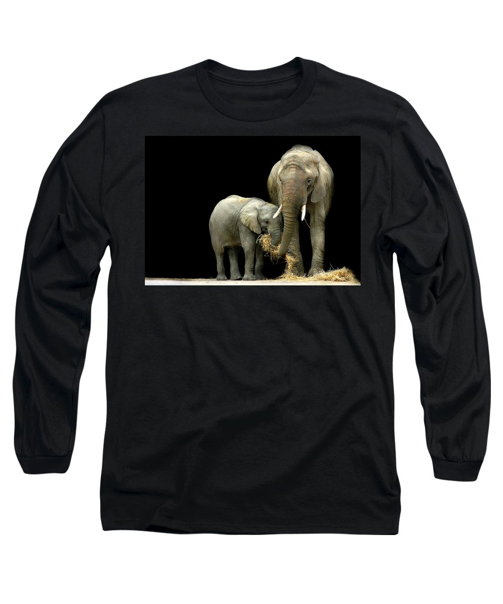 Elephant Long Sleeve T-Shirt featuring the photograph Feeding Time by Stephie Butler