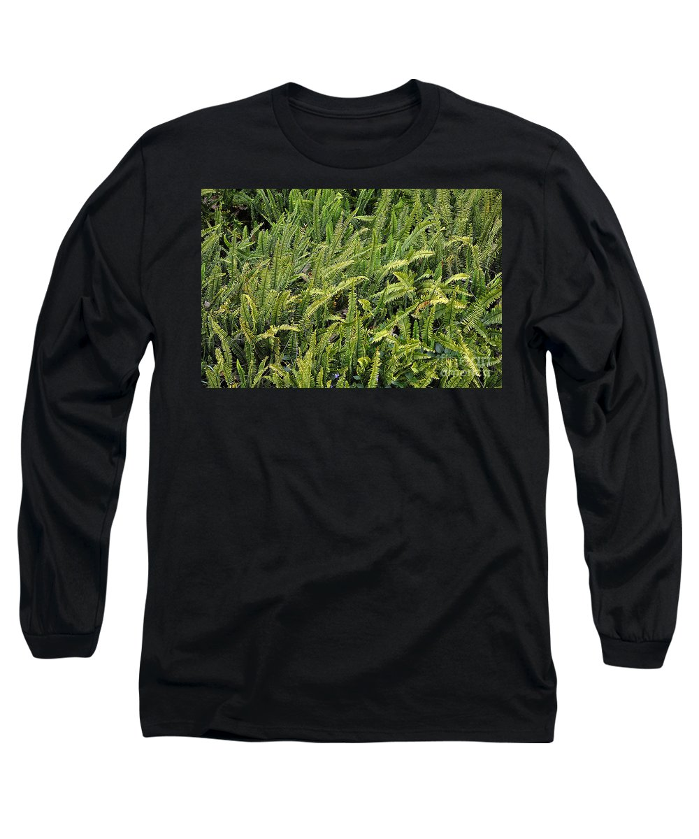 Clay Long Sleeve T-Shirt featuring the photograph Fern by Clayton Bruster