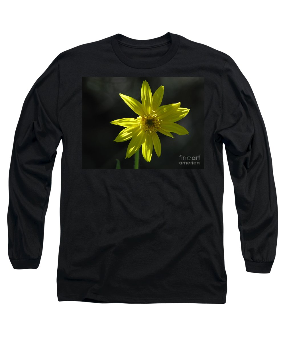 Light Long Sleeve T-Shirt featuring the photograph Floral by Amanda Barcon