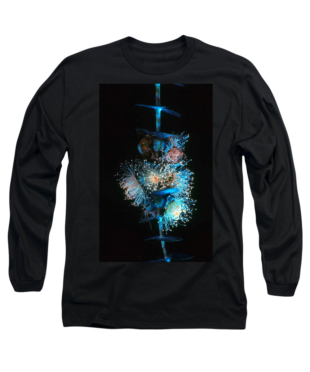 Flowering Eucalyptus Long Sleeve T-Shirt featuring the photograph Flowering Eucalyptus Natural Light by Laurie Paci