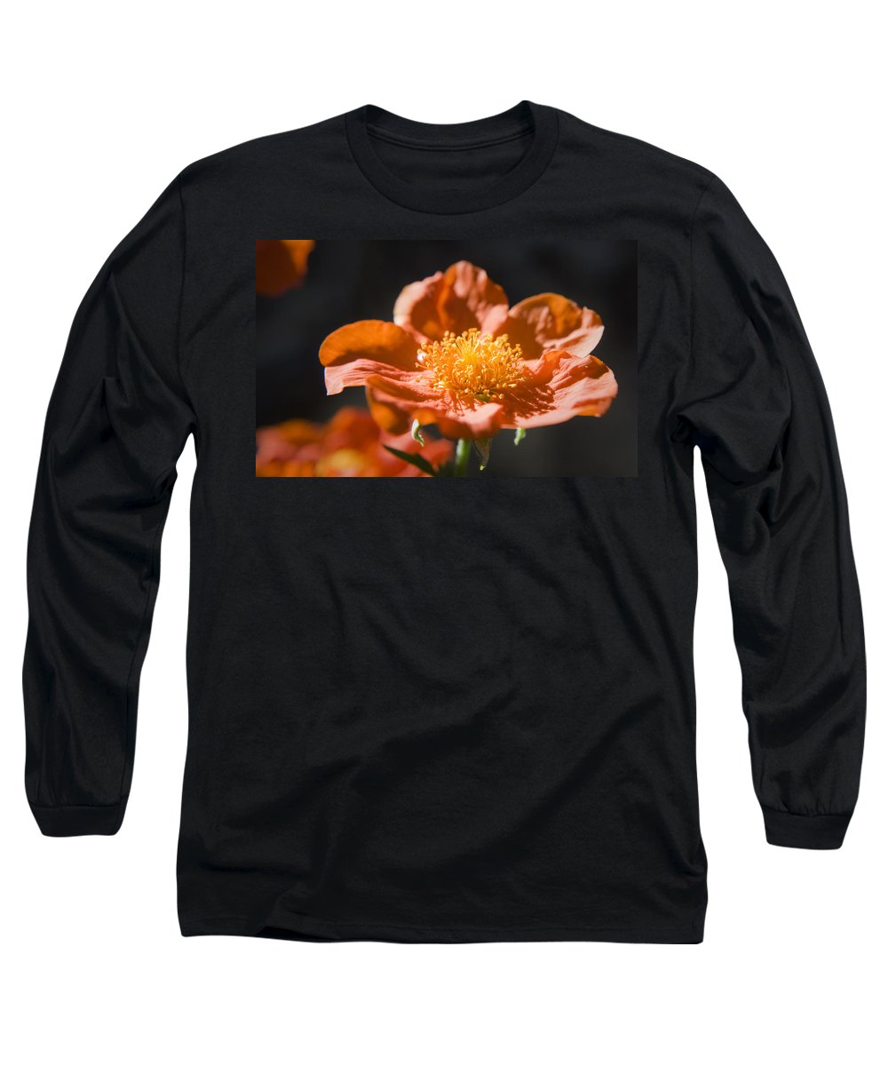 Geum Long Sleeve T-Shirt featuring the photograph Geum Scarlet Avens by Teresa Mucha
