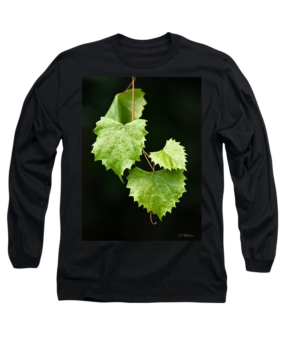 Flora Long Sleeve T-Shirt featuring the photograph Green Leaves by Christopher Holmes