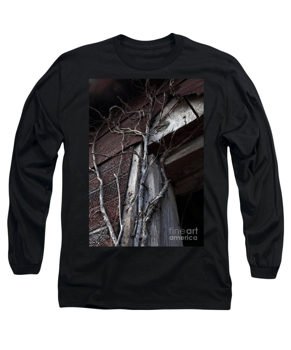 Broken Long Sleeve T-Shirt featuring the photograph Growth by Amanda Barcon