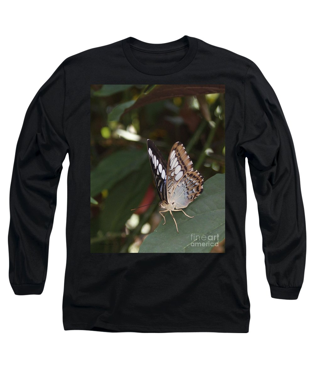 Butterfly Long Sleeve T-Shirt featuring the photograph Hints Of Blue by Shelley Jones