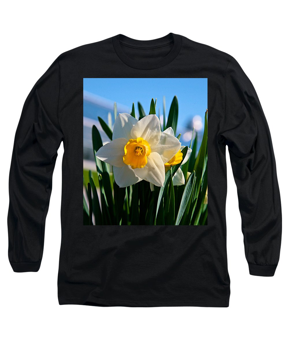 Plant Long Sleeve T-Shirt featuring the photograph Its Spring by Robert Pearson