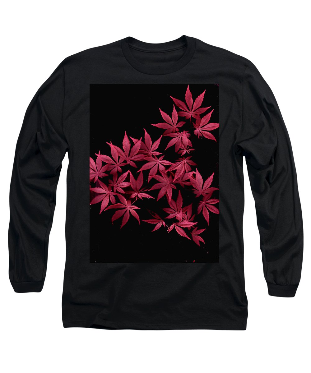 Japanese Maple Long Sleeve T-Shirt featuring the photograph Japanese Maple Leaves by Wayne Potrafka
