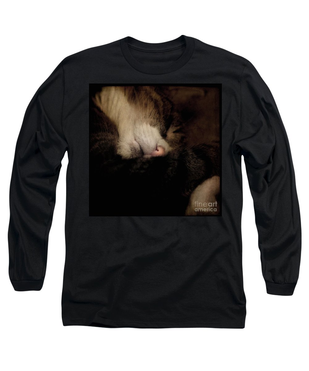 Cat Long Sleeve T-Shirt featuring the photograph Just Sleep by Angel Ciesniarska