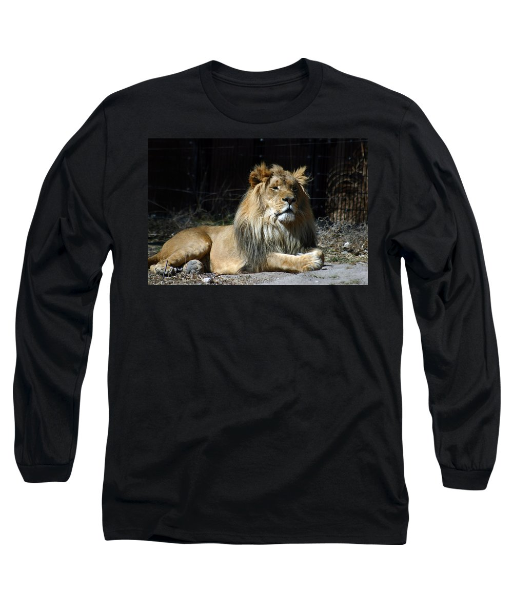 Lion Long Sleeve T-Shirt featuring the photograph King by Anthony Jones