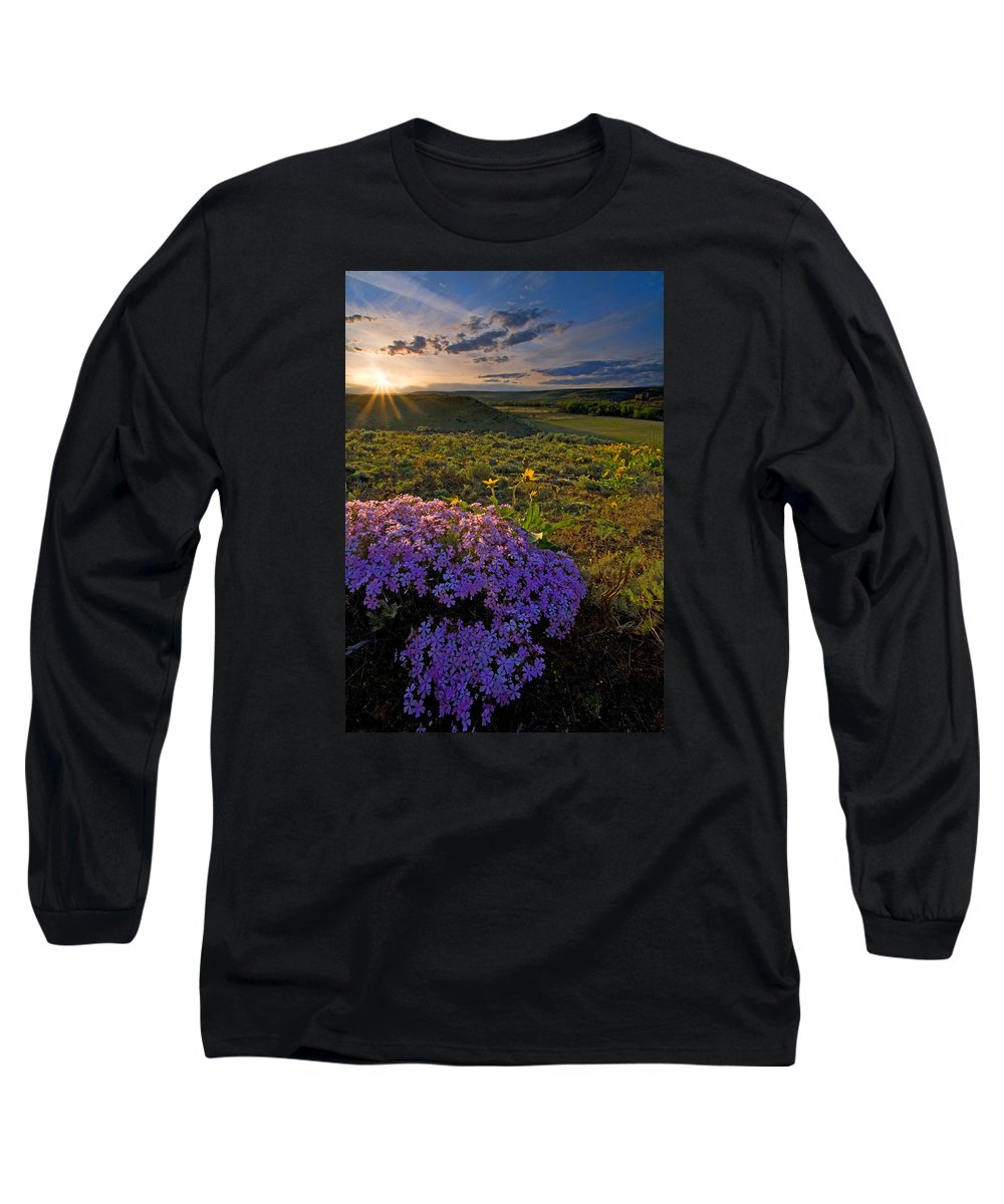 Wildflowers Long Sleeve T-Shirt featuring the photograph Last Light Of Spring by Mike Dawson
