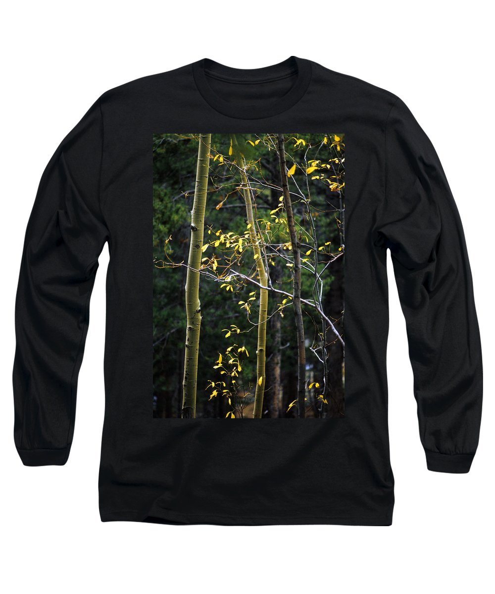 Aspen Long Sleeve T-Shirt featuring the photograph Late Aspen by Jerry McElroy