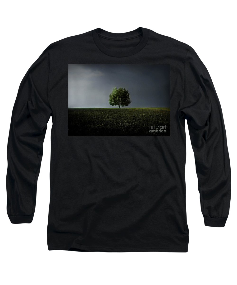 Blue Long Sleeve T-Shirt featuring the photograph Maybe This Year Will Be Better Than The Last by Dana DiPasquale
