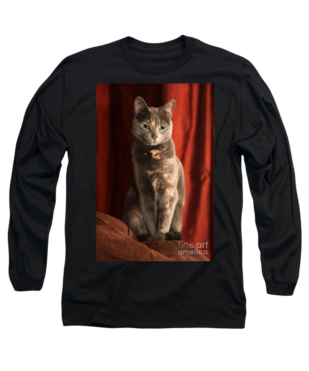 Cat Long Sleeve T-Shirt featuring the photograph Mollie by Amanda Barcon