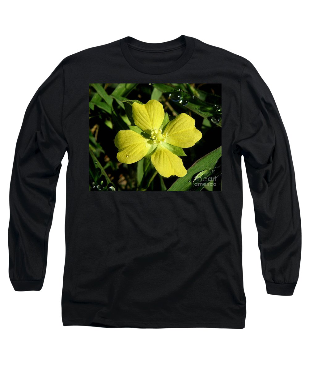 Nature Long Sleeve T-Shirt featuring the photograph Nature In The Wild - Kissed By The Sun by Lucyna A M Green