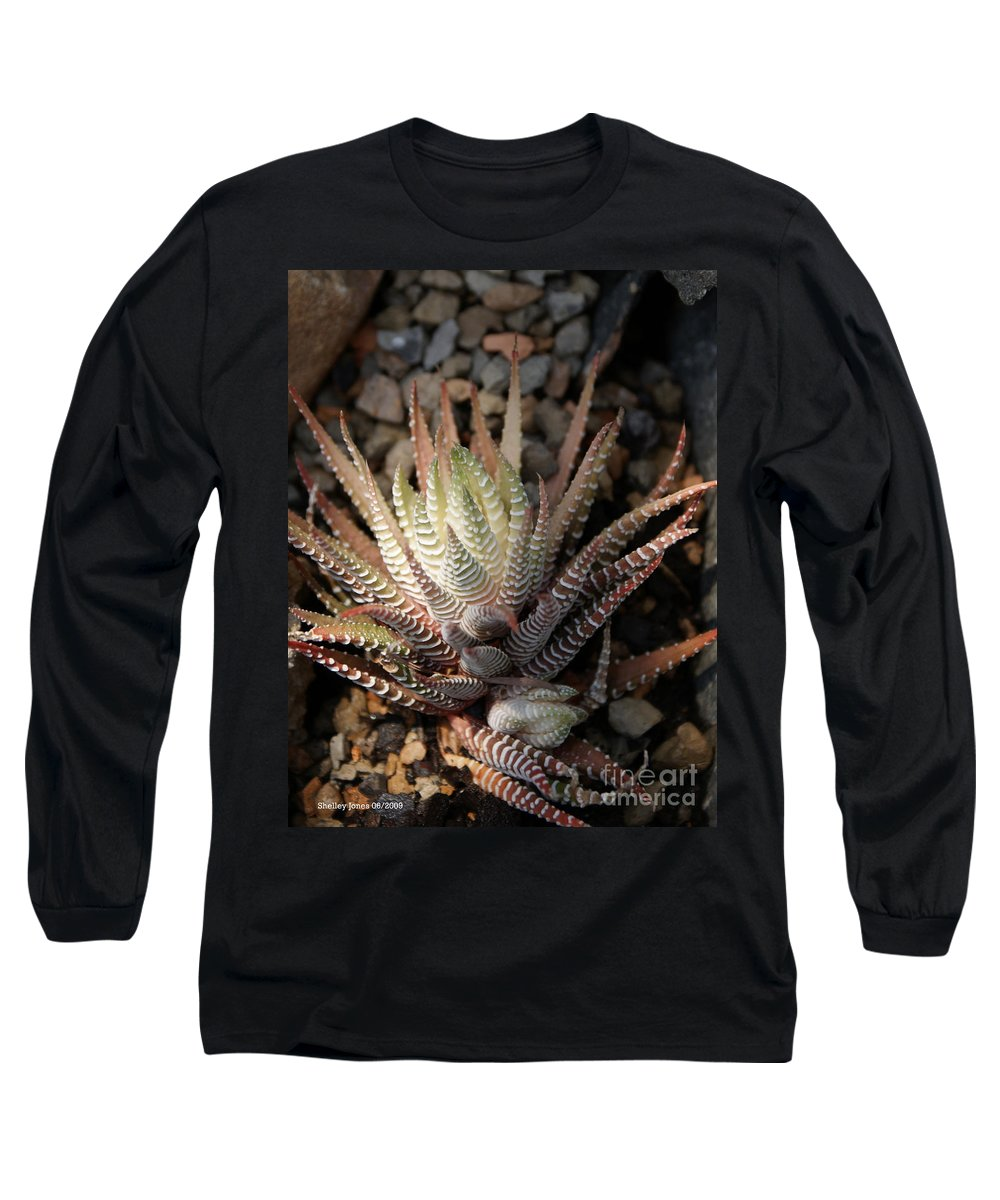 Cacti Long Sleeve T-Shirt featuring the photograph Octo Cacti by Shelley Jones