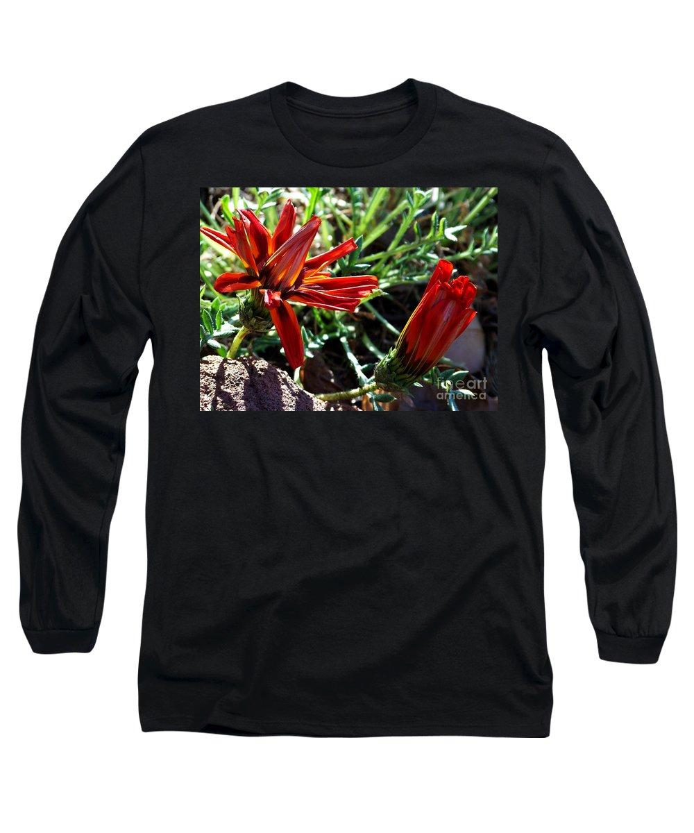 Gazania Long Sleeve T-Shirt featuring the photograph Orange Power by Kathy McClure