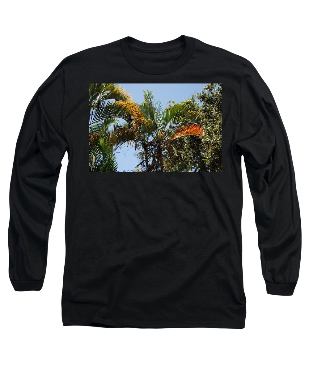 Palms Long Sleeve T-Shirt featuring the photograph Orange Trees by Rob Hans
