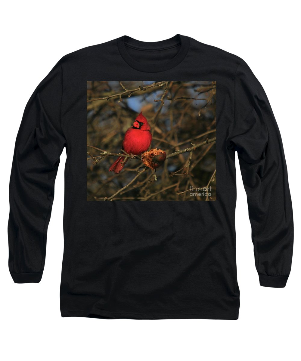 Bird Long Sleeve T-Shirt featuring the photograph Out On A Limb by Robert Pearson