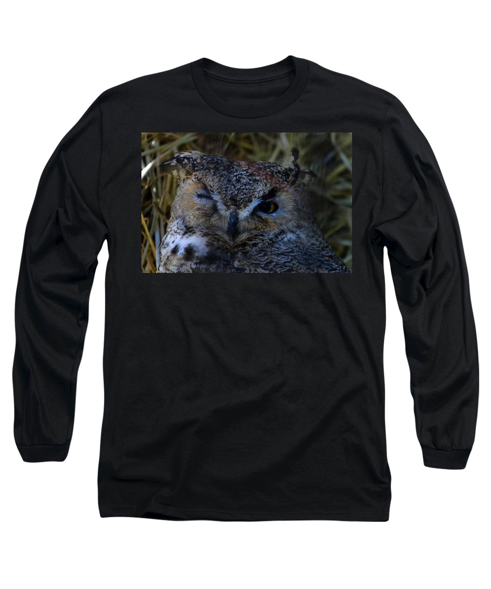 Owl Long Sleeve T-Shirt featuring the photograph Owl by Anthony Jones
