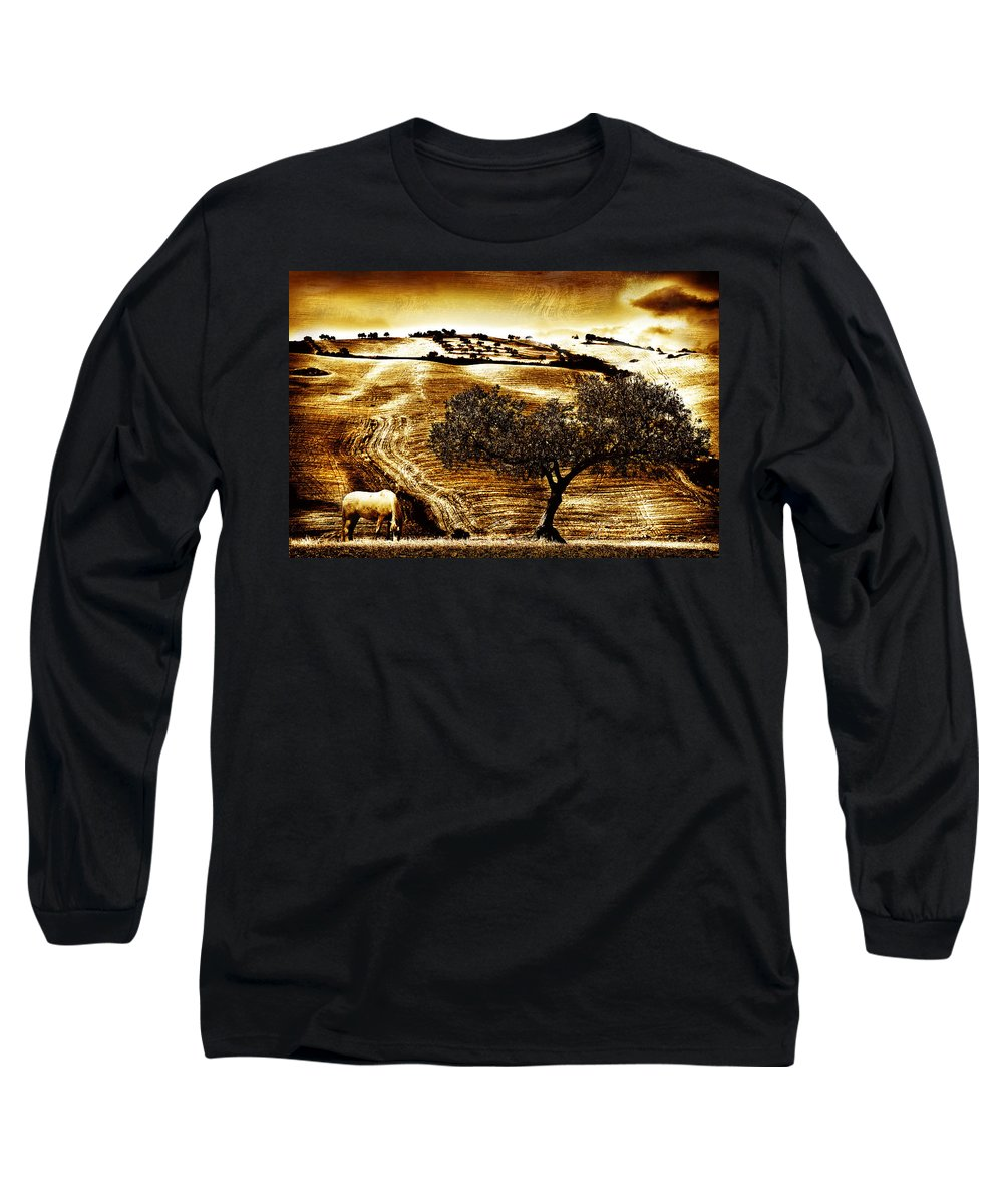 Landscape Long Sleeve T-Shirt featuring the photograph Pastelero Textures by Mal Bray