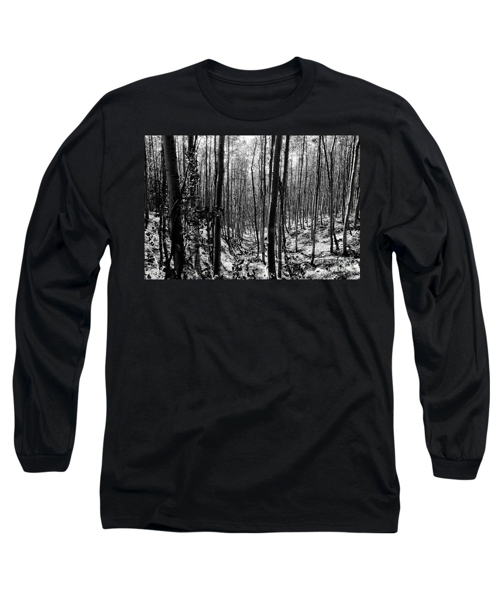 Pecos National Forest Long Sleeve T-Shirt featuring the photograph Pecos Wilderness by David Lee Thompson