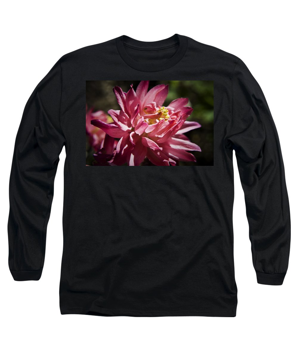 Columbine Long Sleeve T-Shirt featuring the photograph Pink Columbine by Teresa Mucha