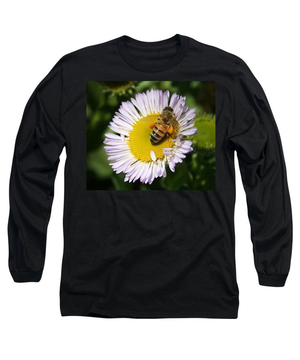 Pollen Harvest Long Sleeve T-Shirt featuring the photograph Pollen Harvest by Ellen Henneke