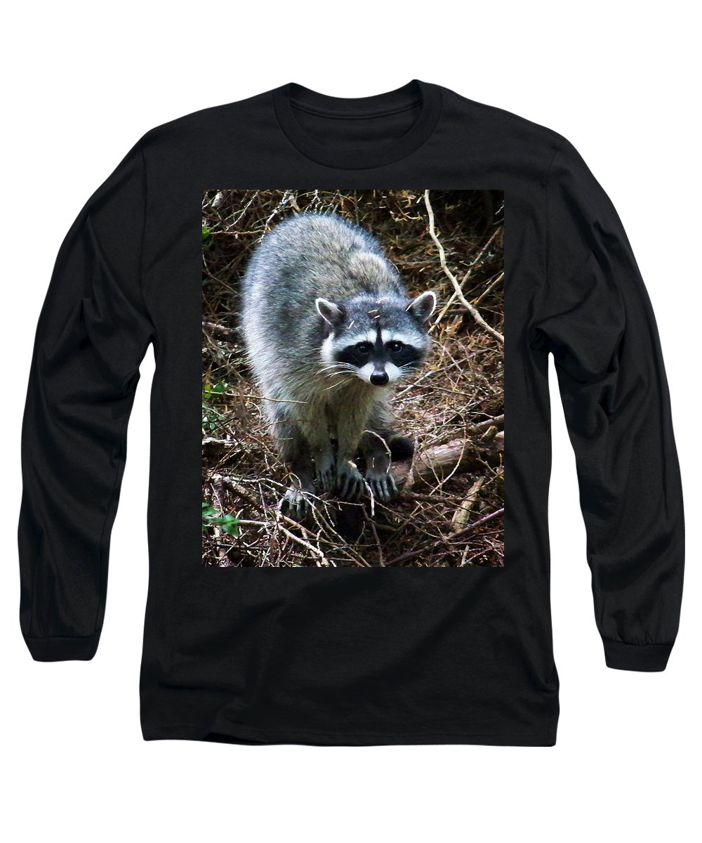 Painting Long Sleeve T-Shirt featuring the photograph Raccoon by Anthony Jones