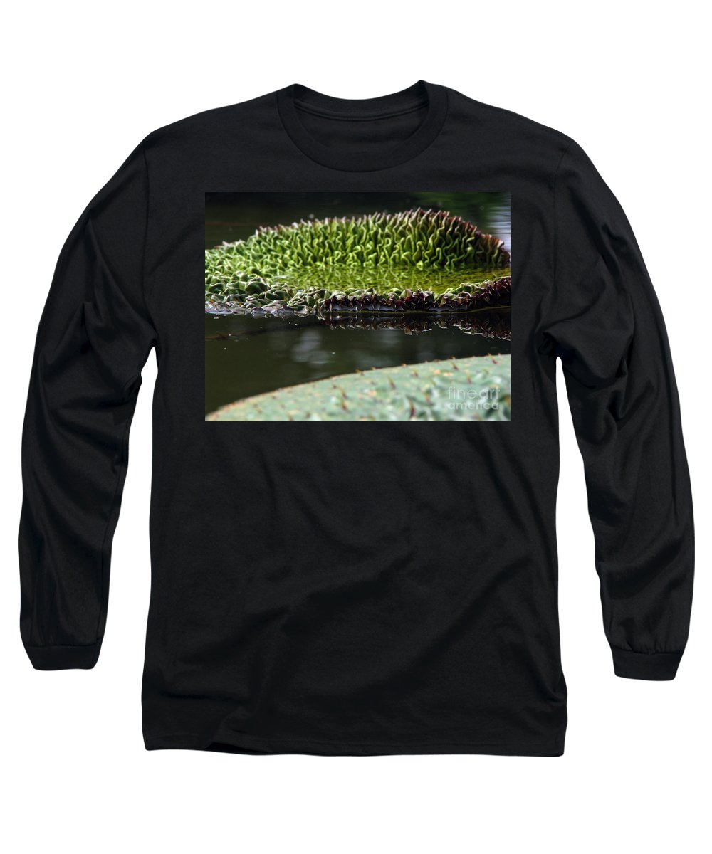 Lillypad Long Sleeve T-Shirt featuring the photograph Ready To Spread by Amanda Barcon