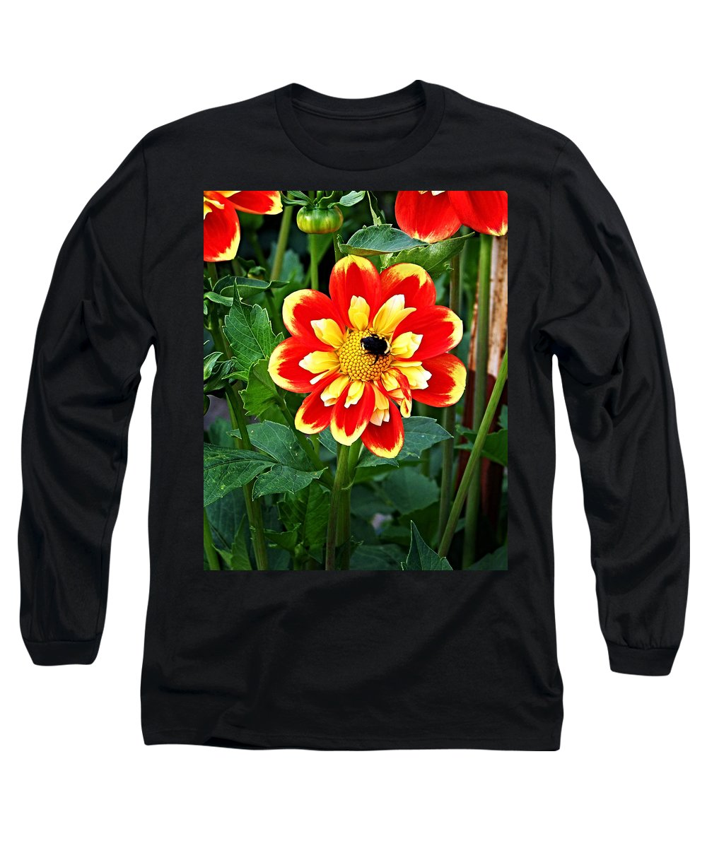 Flower Long Sleeve T-Shirt featuring the photograph Red And Yellow Flower With Bee by Anthony Jones