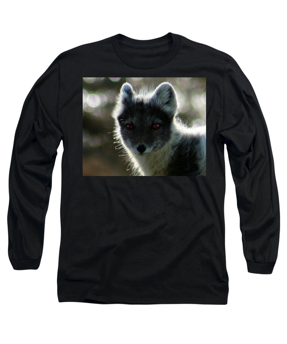 Arctic Fox Long Sleeve T-Shirt featuring the photograph Red Eyes by Anthony Jones