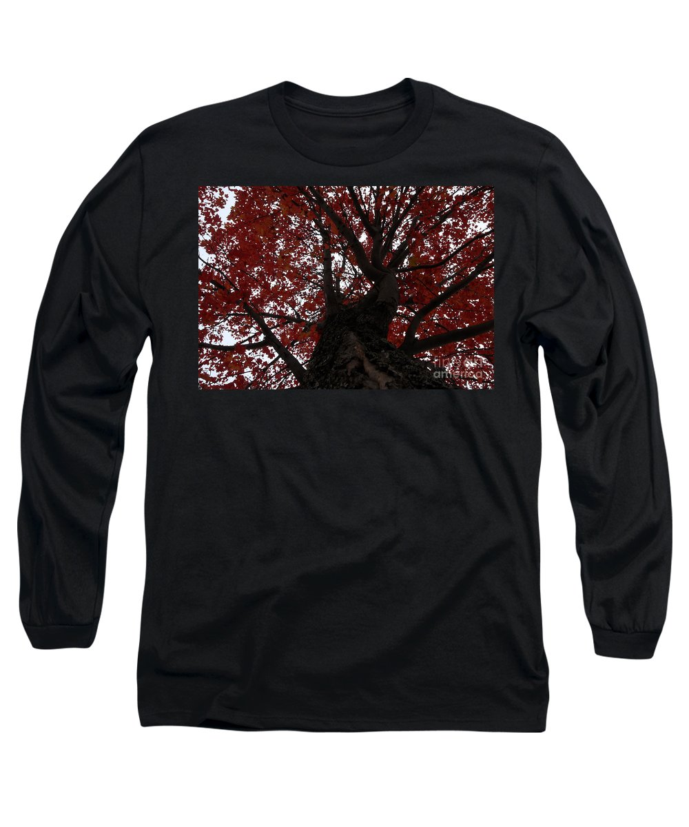 Fall Long Sleeve T-Shirt featuring the photograph Red Tree by David Lee Thompson