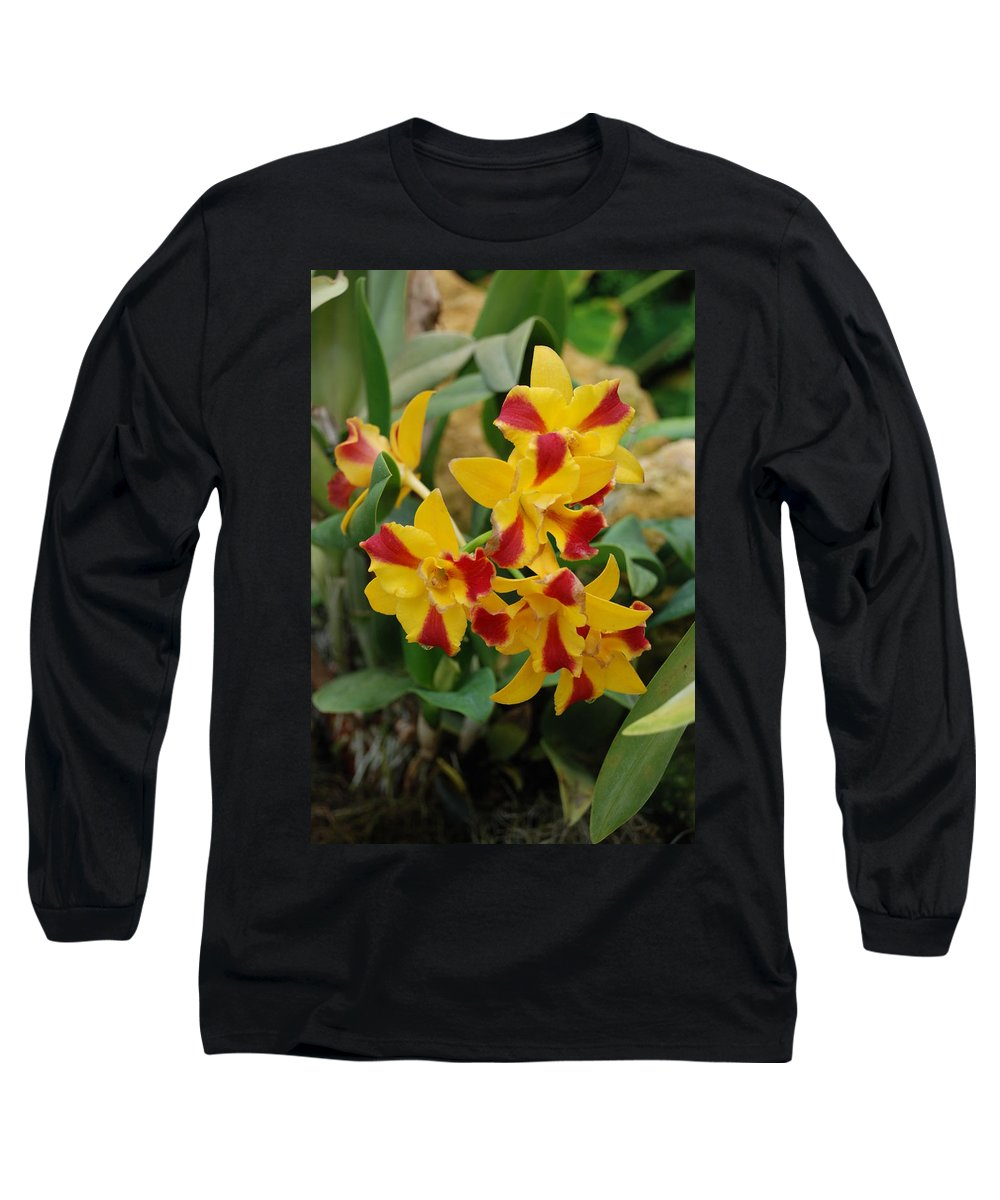 Macro Long Sleeve T-Shirt featuring the photograph Red Yellow Orchids by Rob Hans