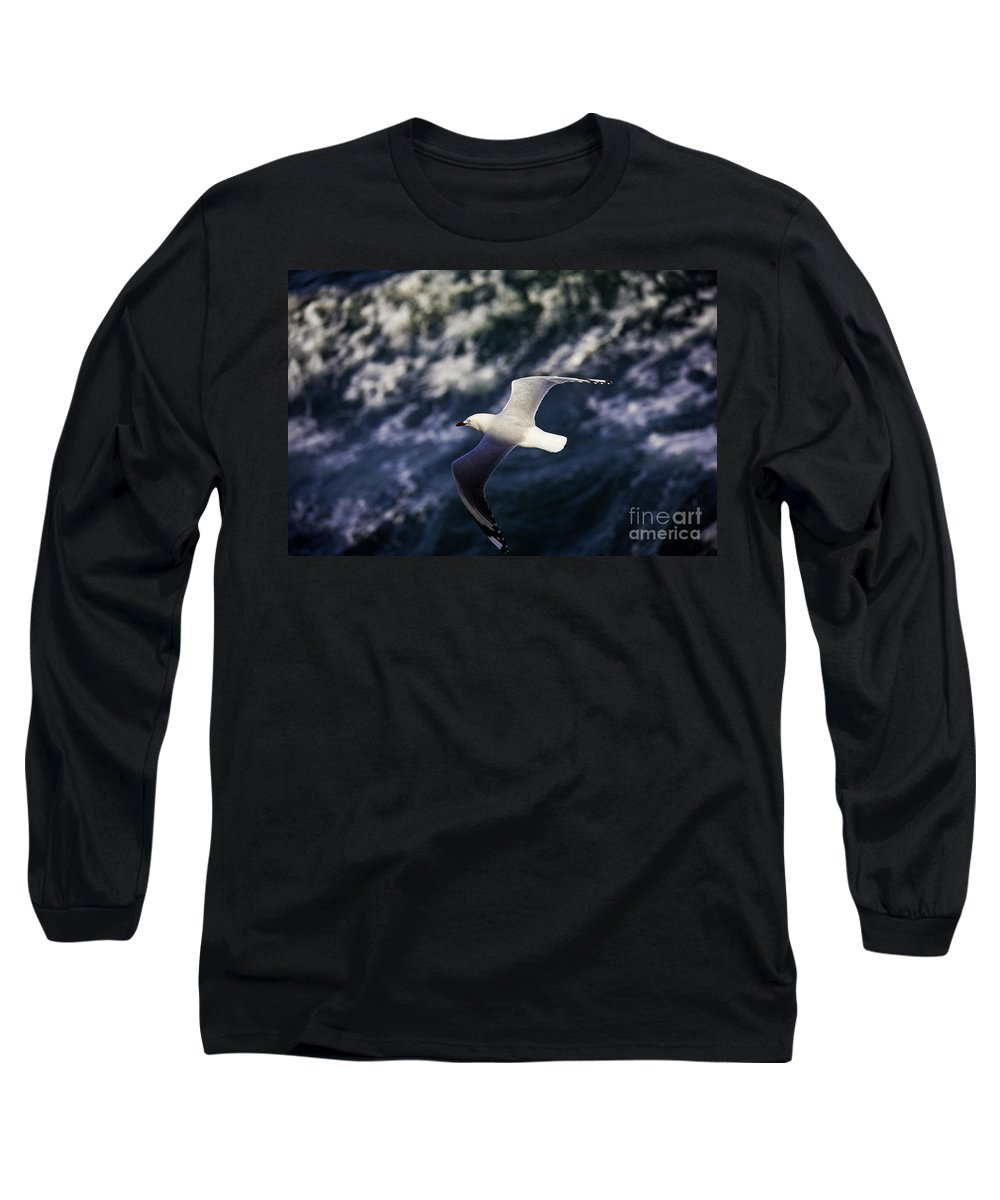 Seagull Long Sleeve T-Shirt featuring the photograph Seagull In Wake by Sheila Smart Fine Art Photography