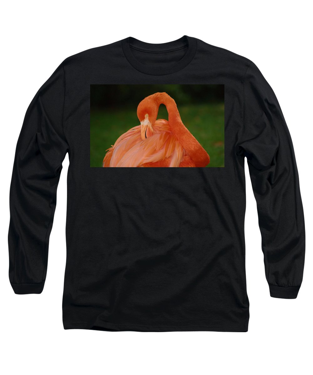 Flamingo Long Sleeve T-Shirt featuring the photograph shy by Gaby Swanson
