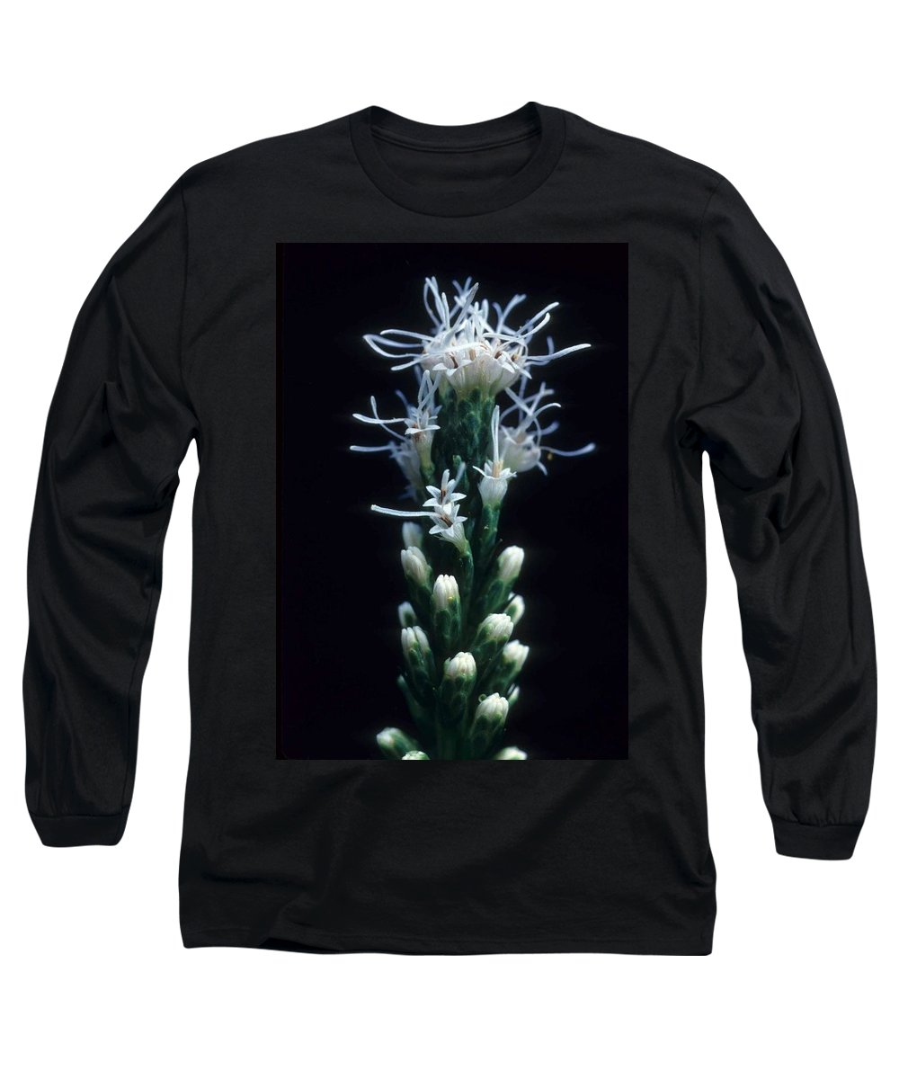 Flower Long Sleeve T-Shirt featuring the photograph Snowflake Flower by Laurie Paci