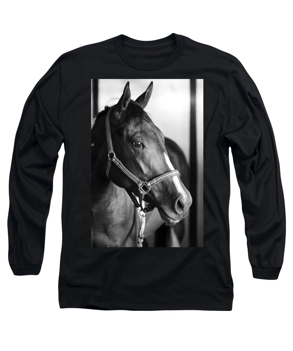 Horse Long Sleeve T-Shirt featuring the photograph Horse And Stillness by Marilyn Hunt