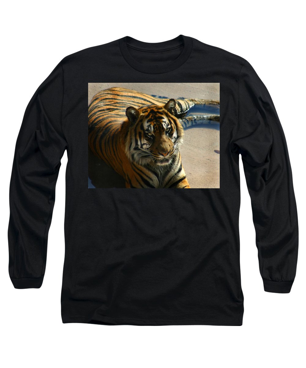 Tiger Long Sleeve T-Shirt featuring the photograph Sumatran Tiger by Anthony Jones
