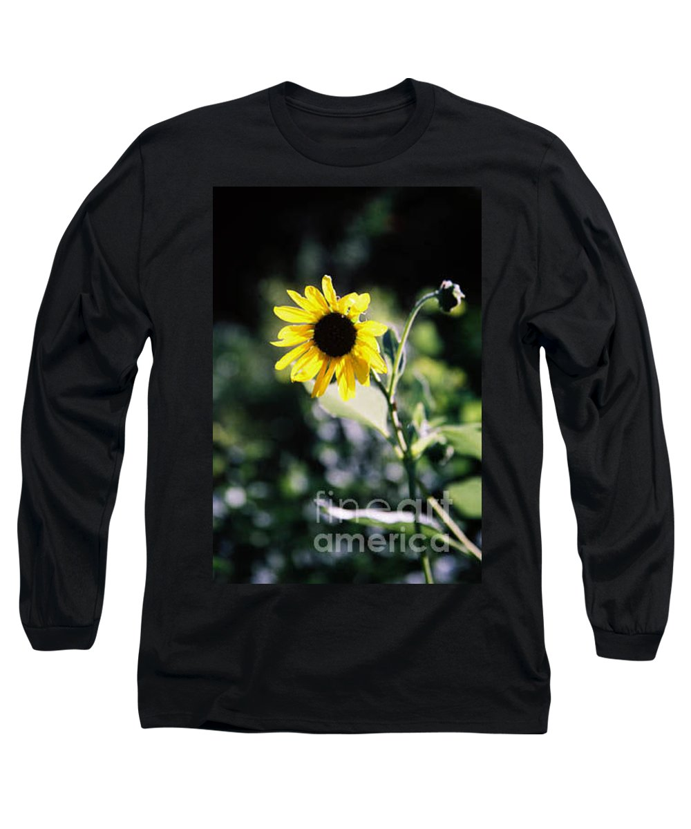 Sunflower Long Sleeve T-Shirt featuring the photograph Summer Sunshine by Kathy McClure